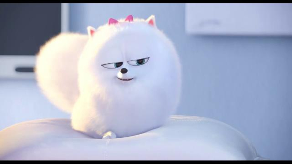 The Secret Life Of Pets Video