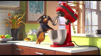 The Secret Life of Pets - Thumbnail 7