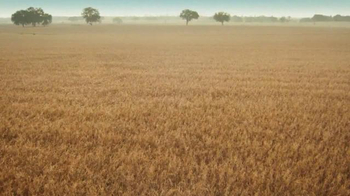 Cheerios TV Spot, 'Oat Field' - Thumbnail 8