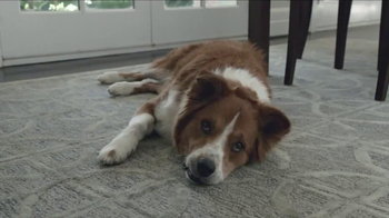 Keurig TV Spot, 'Brew the Love: Dog' - Thumbnail 5