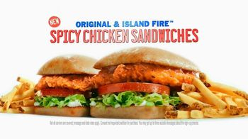 Sonic Drive-In Spicy Chicken Sandwiches TV Spot, 'New Word'