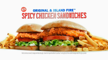 Sonic Drive-In Spicy Chicken Sandwiches TV Spot, 'New Word' - 2323 commercial airings