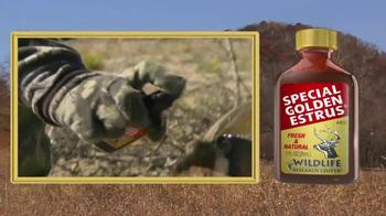 Wildlife Research Center Special Golden Estrus TV Spot, 'Decoy' - Thumbnail 1