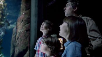 Disney Parks TV Spot, 'Disney Side: Under the Sea' - Thumbnail 2
