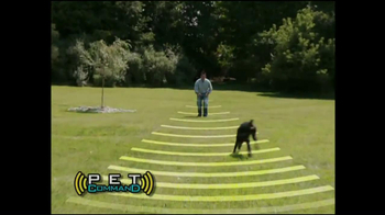 Pet Command TV Spot - Thumbnail 2