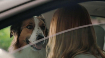 Milk-Bone TV Spot, 'Ready, Set, Go' - Thumbnail 8
