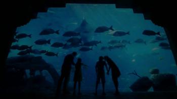 Atlantis TV Spot, '$189 Per Night' - Thumbnail 5