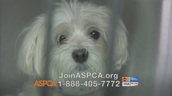 ASPCA TV Spot, 'Someone Does Care' Featuring Kim Rhodes