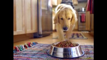 Purina Beneful Original TV Spot, 'Playing in the Snow'