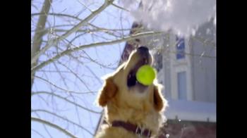 Purina Beneful Original TV Spot, 'Playing in the Snow'  - Thumbnail 4