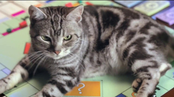 Monopoly TV Spot, 'Cat Piece' - Thumbnail 5