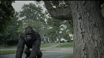 Gorilla Glue TV Spot, 'Fence and Tarp' - Thumbnail 8