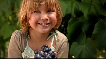 Welch's Grape Juice TV Spot, 'Every Grape Connected' - Thumbnail 1