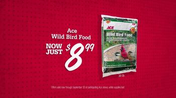 ACE Hardware TV Spot, 'Bird Food and Air Filters' - Thumbnail 3