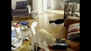 Fresh Step Triple Action TV Spot, 'Remote-Control Car' - Thumbnail 1