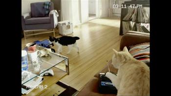 Fresh Step Triple Action TV Spot, 'Remote-Control Car' - Thumbnail 2