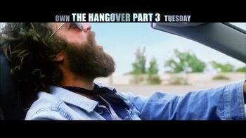 The Hangover Part III Blu-ray and DVD TV Spot - Thumbnail 5