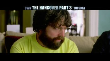 The Hangover Part III Blu-ray and DVD TV Spot - Thumbnail 6