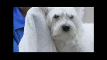 PetSmart Grooming Salon TV Spot, 'Coupon' - Thumbnail 4