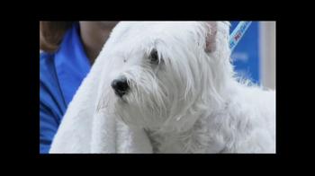 PetSmart Grooming Salon TV Spot, 'Coupon' - Thumbnail 5