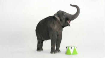 Wonderful Pistachios TV Spot, 'Elephant'