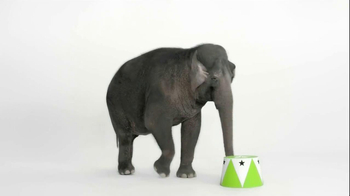 Wonderful Pistachios TV Spot, 'Elephant' - Thumbnail 1
