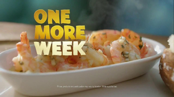 Outback Steakhouse Steak and Unlimited Shrimp TV Spot, 'One More Week' - Thumbnail 2