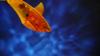 Hexbug Aquabot TV Spot - Thumbnail 6
