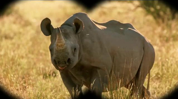 Microsoft Surface TV Spot, 'Protecting the Black Rhino' - 14 commercial airings