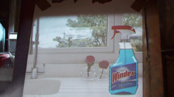 Windex TV Spot, 'Barra ensuciadora' [Spanish] - Thumbnail 2