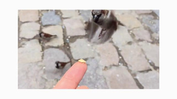 Apple iPhone TV Spot, 'Shot on iPhone 6 by Antoine D.' Song by Vulfpeck - Thumbnail 2