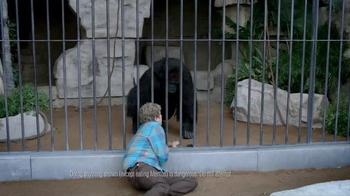 Mentos TV Spot, 'Gorilla' - Thumbnail 2