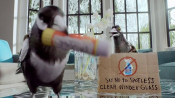 Windex TV Spot, 'Smudge Stick' - Thumbnail 10