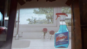 Windex TV Spot, 'Smudge Stick' - Thumbnail 3