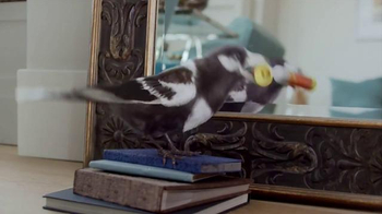 Windex TV Spot, 'Smudge Stick' - Thumbnail 7