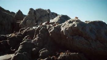Dr Pepper TV Spot, 'One of a Kind Crab Shell' - Thumbnail 3