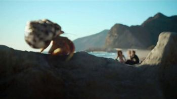 Dr Pepper TV Spot, 'One of a Kind Crab Shell' - Thumbnail 4