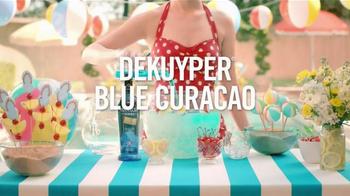 Pinnacle Vodka TV Spot, 'Pool Party Punch' - Thumbnail 5