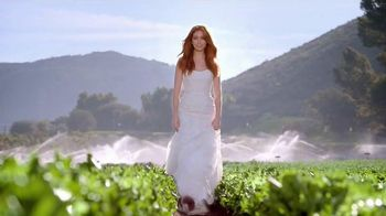 Wendy's Strawberry Fields Chicken Salad TV Spot, 'Wedding' - 4863 commercial airings