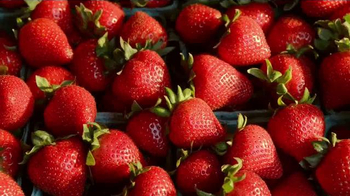 Wendy's Strawberry Fields Chicken Salad TV Spot, 'Wedding' - Thumbnail 4