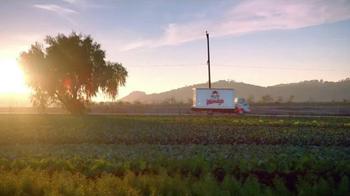 Wendy's Strawberry Fields Chicken Salad TV Spot, 'Wedding' - Thumbnail 5