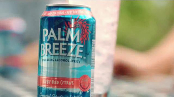 Palm Breeze TV Spot, 'Playa del Meg' - Thumbnail 3
