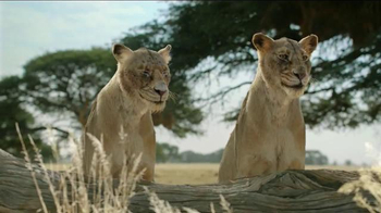 Fiber One TV Spot, 'Don't Fight Your Instincts: Lionesses' - Thumbnail 2
