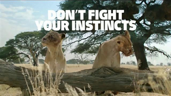 Fiber One TV Spot, 'Don't Fight Your Instincts: Lionesses' - Thumbnail 8