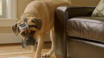 Five Star TV Spot, 'Cinco the Dog vs. Five Star Notebooks: Slobber Clobber'