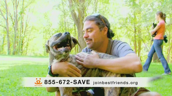 Best Friends Animal Society TV Spot, 'Alfie' Featuring Lisa Edelstein - Thumbnail 9