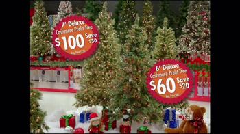 Big Lots Thanksgiving Day Sale TV Spot - Thumbnail 4