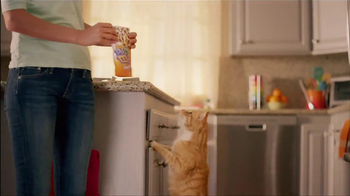 Friskies Party Mix TV Spot - Thumbnail 2
