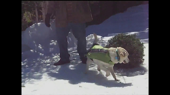 PETCO TV Spot, 'Holidays' - Thumbnail 2