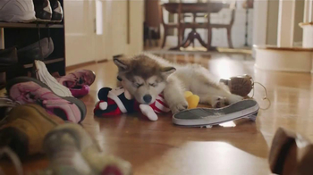 PetSmart TV Spot, 'Pet Toys'